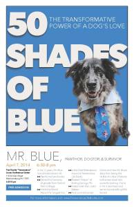 50-Shades-of-Blue (1)